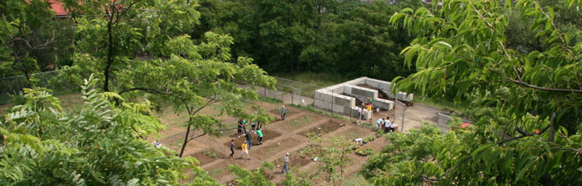 """View from the """"plateau"""" above the garden."""